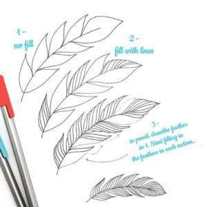 dessiner plume attrape reve